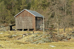 Old wooden barn in the woods, Norway Royalty Free Stock Photography