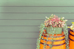 Old wooden barrel with beautiful flowers Royalty Free Stock Images