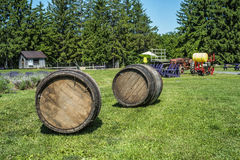 Old wooden barrel with farming equipement. Old wooden barrel with farming equipment on a sunny day Royalty Free Stock Image