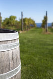 Old Wooden Barrel with Vineyard in Background. A partial capture of a wooden barrell with blurred background of rows of grapes at a vineyward stock images