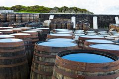 Old wooden barrels and casks with single malt Scotch at whisky distillery in Scotland. Old wooden barrels and casks stand under open sky maturing Scotch single stock image