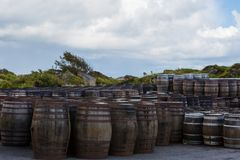 Old wooden barrels and casks with single malt Scotch at whisky distillery in Scotland. Old wooden barrels and casks stand under open sky maturing Scotch single royalty free stock photo