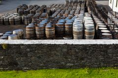 Old wooden barrels and casks with single malt Scotch at whisky distillery in Scotland. Old wooden barrels and casks stand under open sky maturing Scotch single stock photography