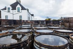 Old wooden barrels and casks with single malt Scotch at whisky distillery in Scotland. Old wooden barrels and casks stand under open sky maturing Scotch single royalty free stock photography
