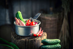 Old wooden basement with fresh herbs and vegetables Royalty Free Stock Images