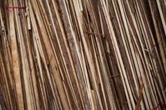 Old wooden batten. Texture background stock photo