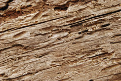 Old wooden beam closeup Royalty Free Stock Photo