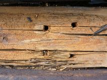 Old wooden beam. Four round holes in an old wooden beam Royalty Free Stock Image