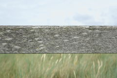 Old wooden beam with grass and sky Royalty Free Stock Image
