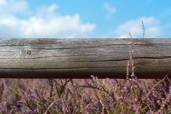 Old wooden Beams in the Heather Stock Image