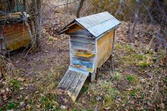 Old wooden beehive with metal roof in the countryside in spring stock image