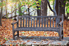 Old Wooden Bench in park Royalty Free Stock Photography
