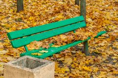 Old wooden bench in an autumn park against the background of fallen maple leaves Stock Photography