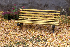 Old wooden bench in city park. natural vintage autumn background Stock Photos