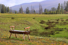 Old wooden bench in early spring Stock Photo