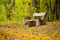 Old wooden bench Stock Image