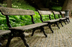 Old wooden bench. Four old bench in the park Royalty Free Stock Image