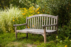Old Wooden Bench in Garden Stock Images