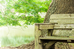 Old  wooden bench in park. Royalty Free Stock Photos