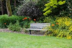 Old Wooden Bench in a Public Garden Royalty Free Stock Photos
