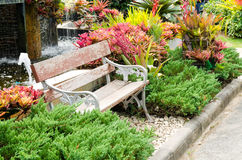 Old wooden benches in the outdoor garden among the many colorful plants Stock Image