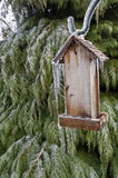Old Wooden Bird feeder with icicles hanging in front of tree Royalty Free Stock Photos