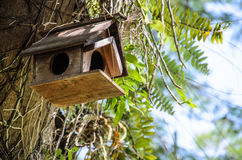 Old wooden birdhouse tied Stock Photo