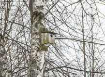 Old wooden birdhouse on a tree. On the background of branches royalty free stock images