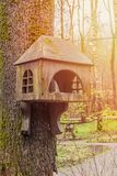 Old wooden birdhouse on a tree in forest Park , hand wood shelter for birds to spend the winter stock image