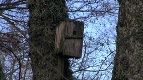 Old wooden birds neste-box birdhouse in park Stock Photo