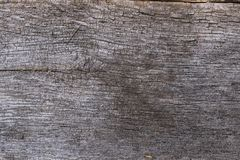 Old wooden board with an interesting texture stock photos