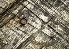 Old wooden board with nail Stock Image