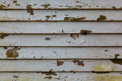 Old wooden board painted white. Old painted tree Royalty Free Stock Photo