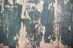 Old wooden board with the remains of paint. selective Focus Stock Photography