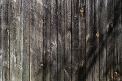 Old wooden Board. Wood texture, real boards Royalty Free Stock Photo