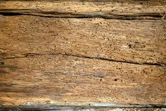 Old wooden boards background full of shipworm holes Stock Photography