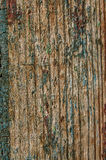 Old wooden boards with paint peeling close-up Stock Images