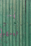 Old wooden boards painted in green background Royalty Free Stock Images