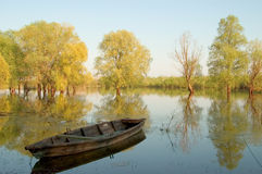 Old wooden boat. The old wooden boat in the river Royalty Free Stock Photo