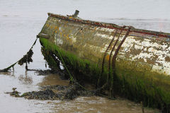 Old Wooden Boat. Decayed, Old and isolated Wooden Boat Royalty Free Stock Photo