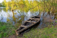 Old wooden boat. On river in spring time Stock Photography