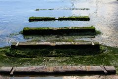 Old wooden boat ramp with moss leading to the sea. Marsaxlokk, Malta Stock Photos