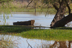 Old Wooden Boat Under A Tree On Bank Of The Summer River Stock Photo