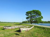 Two old ships and maple tree, Lithuania Royalty Free Stock Image