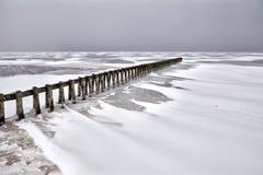 Old wooden breakwater on frozen Ijsselmeer Stock Photo