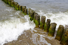 Old wooden breakwaters Royalty Free Stock Photos