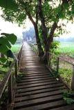 Old wooden bridge. Across the lake Royalty Free Stock Photos