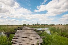 Old wooden bridge across the river. Royalty Free Stock Photo