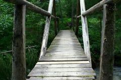 Old wooden bridge across the stream in forest. Old wooden bridge across the stream hidden in forest vegetation stock image