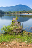 Old Wooden bridge along the lake Stock Photos